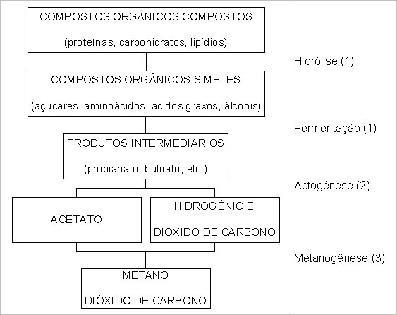 fig1_fundamentos