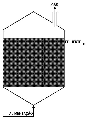 Figura 2c - Filtro Anaeróbio