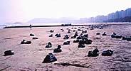 Armazenamento provisório em sacos plásticos na praia