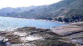 Costão da praia da Feiticeira - Ilhabela