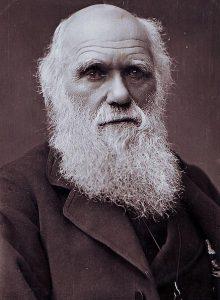 Charles Darwin (1809-1882) o pai da teoria da evolução das espécies